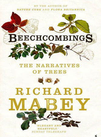 Beechcombings -  book jacket