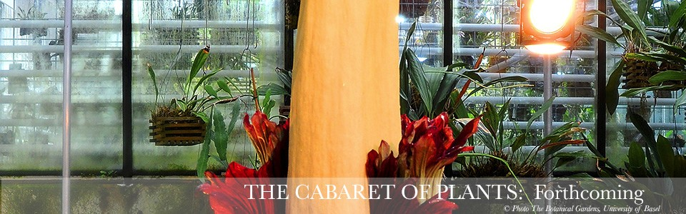 The Cabaret of Plants - Forthcoming