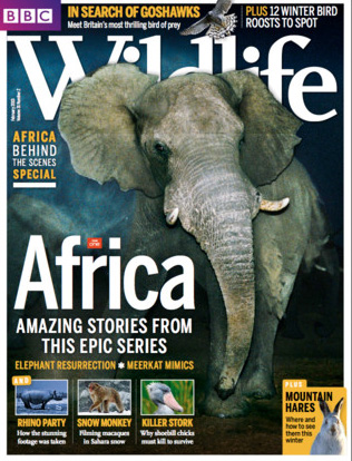 suscribe to BBC Wildlife magazine with iTunes